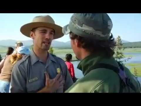America The Wild: Yellowstone Bears