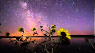 Семена овощных и цветочных растений ПОЧТОЙ - БЕЛАРУСЬ, МОГИЛЕВ(В магазине «6 Соток» [ http://6-sotok.mogilev.biz/ Тел.: (0222) 22-52-71] Вы можете приобрести семена цветов и овощей, средства..., 2013-06-03T18:15:27.000Z)