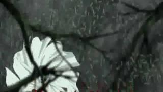 Vampire Knight Opening 2