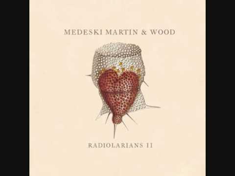 Medeski, Martin & Wood -