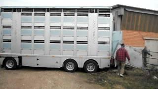 Scania Zilio betaillere les déchets d'élevage- vee afval