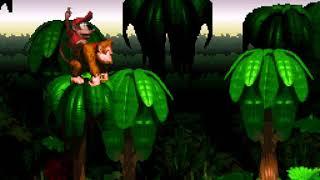 Donkey Kong Country - 1 - he's finally back