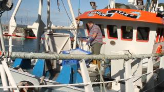 Boat Stories: Fishing for the Long Haul?