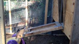 Winch Being Used As An Automatic Chicken Coop Door Opener