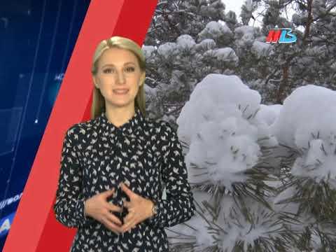 Волгоград, 23 января. О погоде и не только...