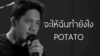 🎵 จะให้ฉันทำยังไง - โปเตโต้ POTATO LIVE 2016