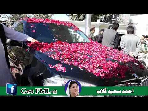 PML n New Song