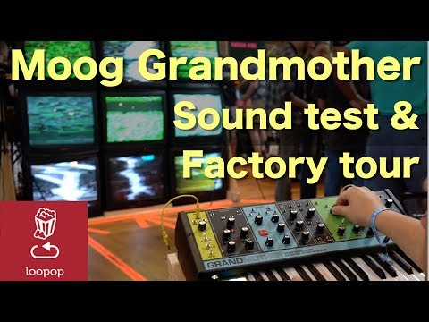 Moog Grandmother sound test and popup factory tour - 동영상