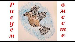 Как нарисовать птичку воробья. Уроки рисования для детей.(Уроки рисования для детей. Учимся рисовать животных, людей, машины, мультяшных героев. Рисуем и раскрашивае..., 2016-02-05T10:48:55.000Z)