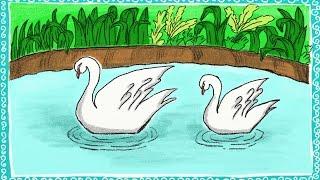 swan lake draw drawing