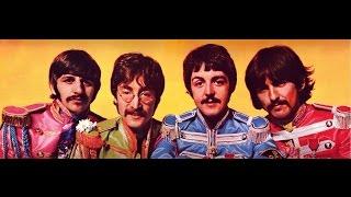 原題 Winged Beatle / ウィングド・ビートル 製作 iamaphoney / アイア...