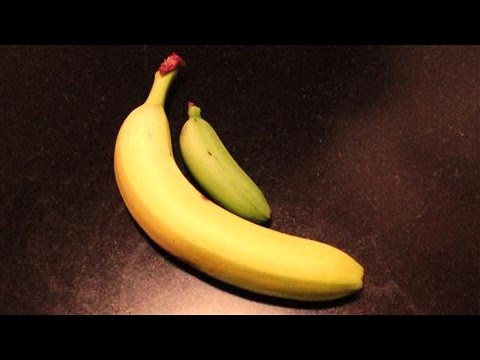 Baby Bananas Are Trying to Make It Big