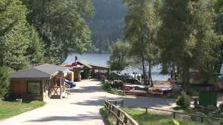 Naturcampingplatz Weiherhof am Titisee