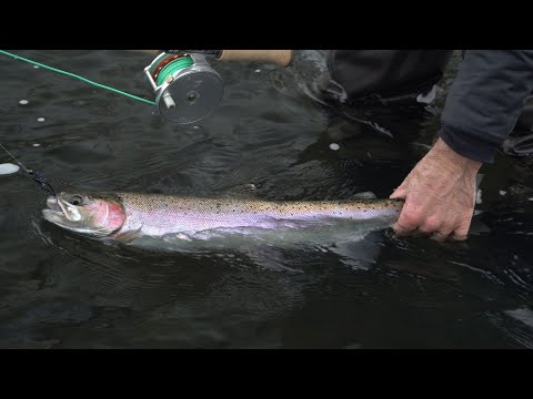 Fishing Report January 4th, 2020 | Ashland Fly Shop