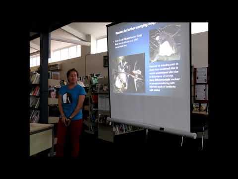 Robin Long - Fiordland crested penguin (tawaki) talk 28 Feb 2018