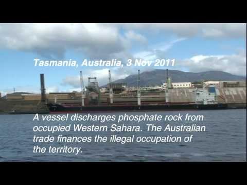 Tasmanian plunder of Western Sahara continues, 3 Nov 2011