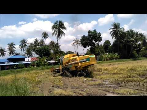 Mesin Padi 8060 Menuai Padi Dekat Pmtg Sintok Khamis 080916