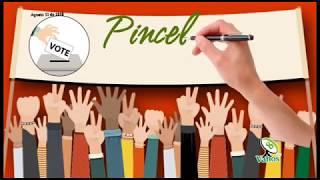 Pinceladas de Educación Política, Consulta Anticorrupción - 13 agosto 2018