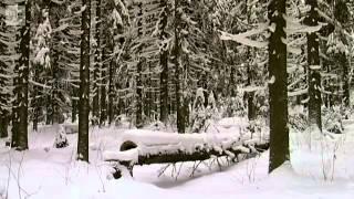 Finska krigets myter 2014 01 11T11:30:00