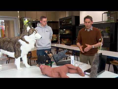 (Onder)Wijs met dieren: Alternatieven levende dieren