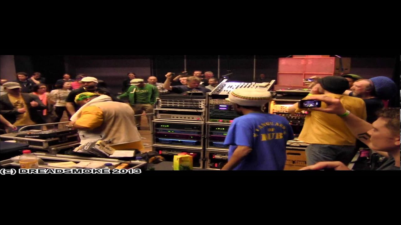 DUB reggae dubstep rasta club skanking music Childrens Kids t-shirt 3-13 years