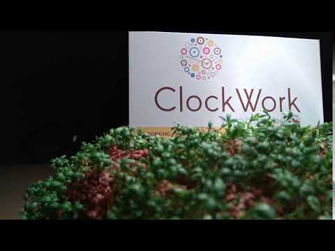 Rzeżucha Matrix - Wirtualne Biuro Poznań - Clockwork