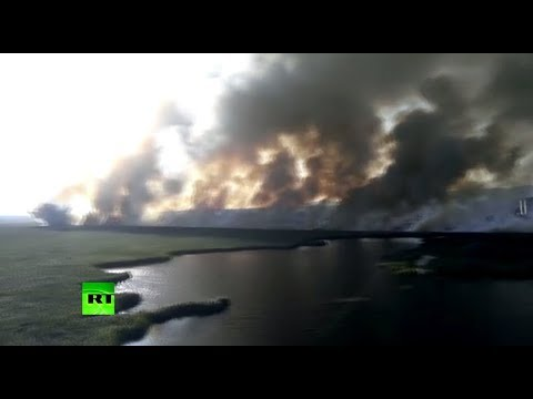 Под Анапой горит 1,5 тысячи кв.м камыша, пожар тушит авиация МЧС