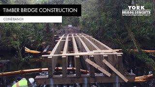 York Bridge Concepts™ - Cone Ranch - Plant City Fl