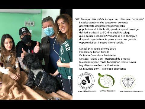 PET Therapy Una valida terapia per ritrovare l'armonia!