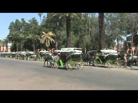 Morocco 2011 - Dominic Coleman