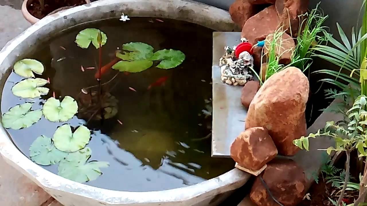 Gentil How To Make Patio Pond At Home# DIY #koi Karp Pond