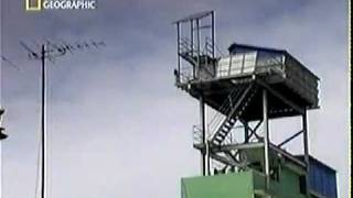THE PIGEON GAME (RACING PIGEON