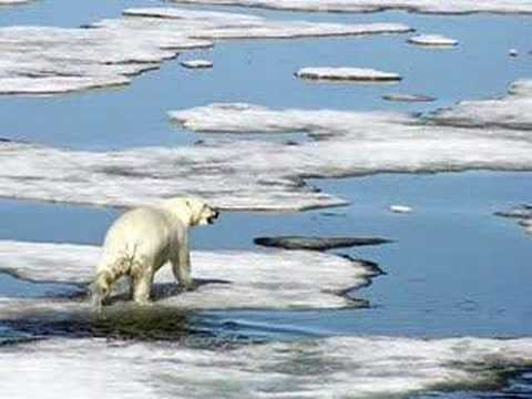 First Look: Arctic Changes (CBS News)