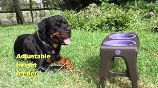 DEXAS POPWARE -Складная посуда и аксессуары для животных