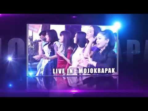 New Pallapa - Arjun - live in Tembelang Jombang