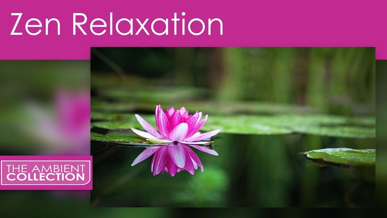 Zen relaxation dvd japanese gardens for relaxing and for Japanese garden meditation