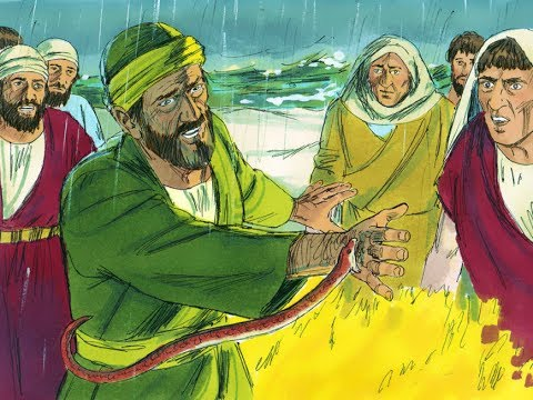 ACTS CHAPTER 28 - PAUL GETS BIT BY SNAKE - ARRIVES IN ROME