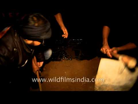 Dating a pakistani muslim man buries