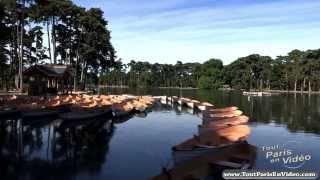 Paris - Timelapse Bois de Boulogne (full HD)