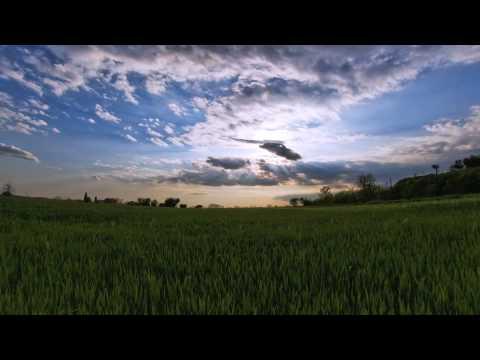 Alan Watts - Willing To Die