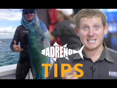 Spearfishing Tuskfish Tutorial | ADRENO