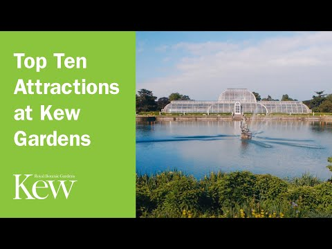 Top Ten Attractions at Kew Gardens