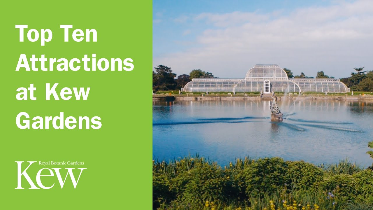 Top Ten Attractions At Kew Gardens   YouTube