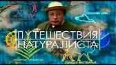 Путешествия натуралиста (Культура, 2006) Зимбабве. Заповедник Мал...