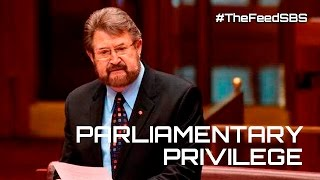 Derrn Hinch names pedophiles under parliamentary privilege - The Feed