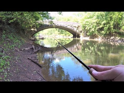 Multi Species CREEK FISHING With Artificial Lures