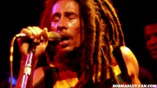 Bob Marley - Ambush in the night - Live Reggae Sunsplash 1979