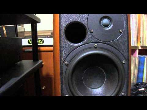 lungyim~pioneer-exclusive-m4--sonus-faber-concertos-(-2-)