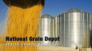 Live: National Grain Depot starts yearly purchase 国储粮库开库收粮 探秘我国最大单体粮库