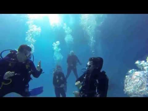 Fun dive in Egypt, Red Sea